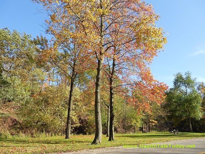 cleveland-metroparks-20111017-03