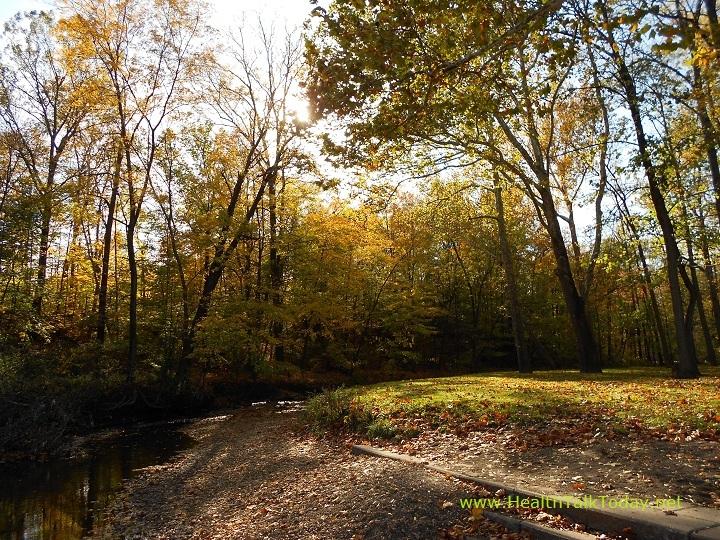 cleveland-metroparks-20111017-15