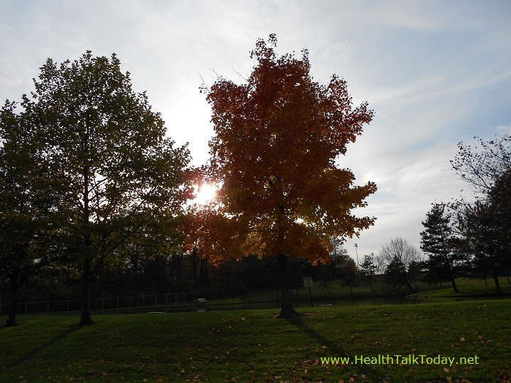 cleveland-metroparks-20111022-01