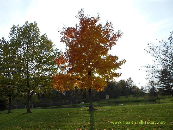 cleveland-metroparks-20111022-02