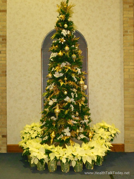 St Albert the Great Christmas Tree