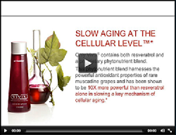 Slow Aging at the Cellular Level